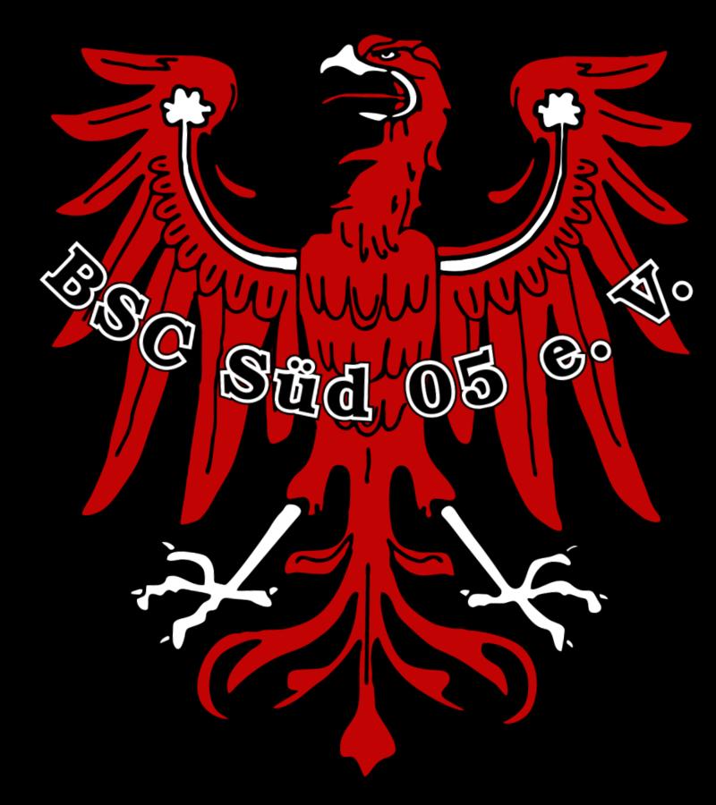 Brandenburger SC Süd 1905 e.V. I