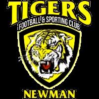 Azam Tigers
