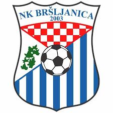 NK Bršljanica